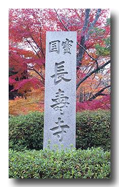 長寿寺にミニ旅行
