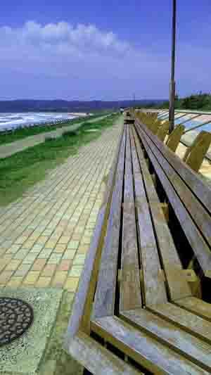 確かに長い世界一長いベンチ