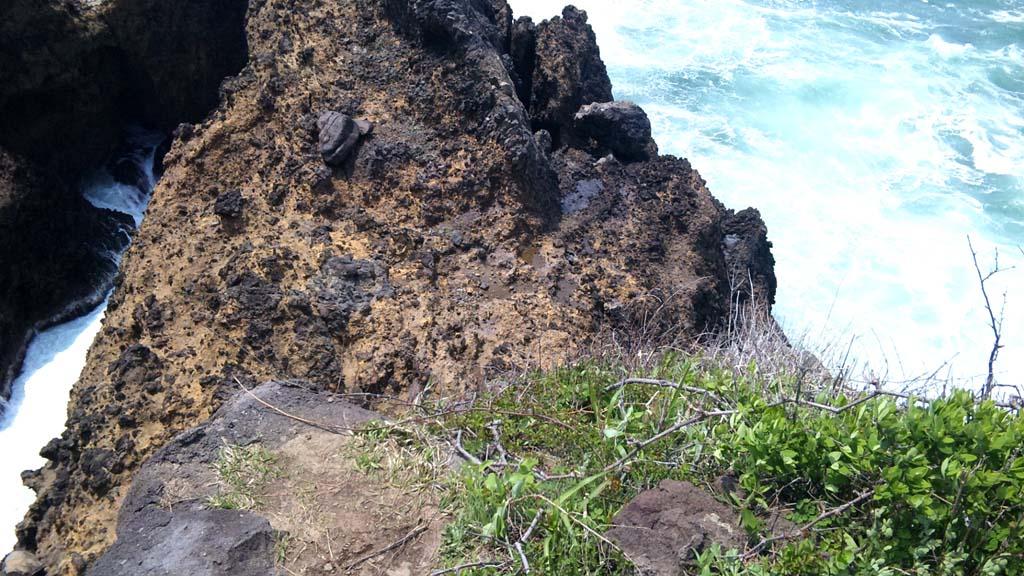 ヤセの断崖を上から見る