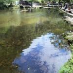 高千穂峡の池1